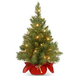 National Tree 24 Inch Majestic Fir Christmas Tree with 35 Cl