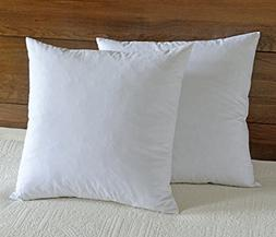 """downluxe 95% Feather 5% Down,100% Cotton Fabric, 18""""x18"""" Squ"""