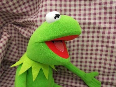 18 inch Eden Full Body Kermit the Hand Plush US