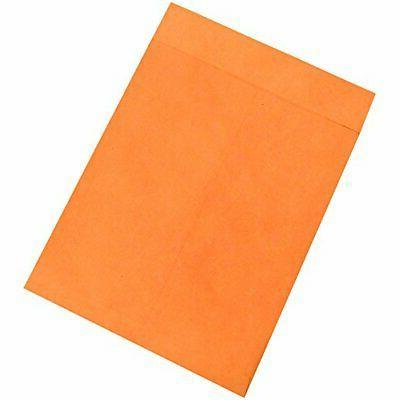ben1081 jumbo envelopes